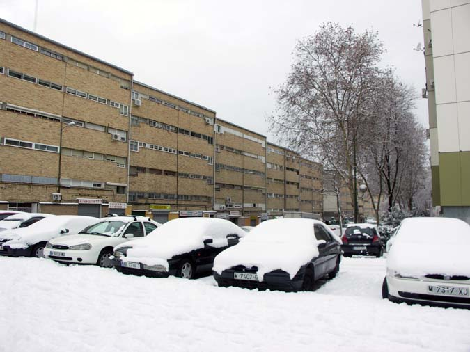 Coches nevados