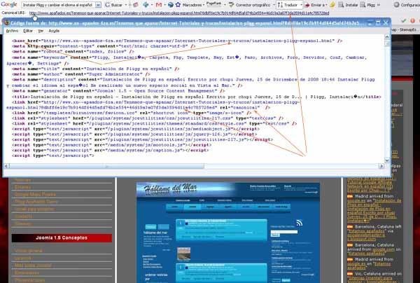 tag canonical, base y código fuente