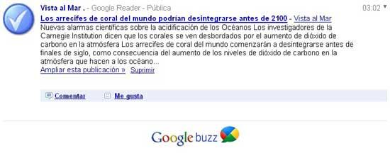 Google Buuz único