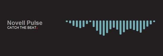 Logo Novell Pulse