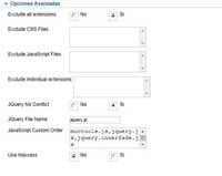 JCH plugin, opciones avanzadas