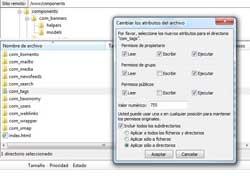 permisos directorio components tags