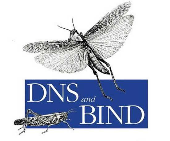 servidor dns con bind 9