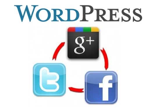 Fragmentos de WordPress para interactuar con redes sociales