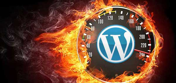 WordPress, optimización
