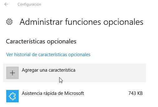 agregar una característica en Windows 10