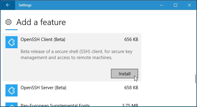 instalar cliente SSH