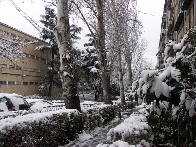 Nieve a la puerta