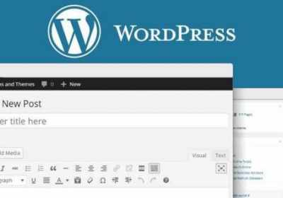 Bug crítico en la REST API de Wordpress: ¡Evita que tu blog sea hackeado!