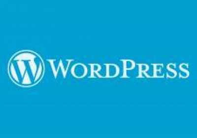 Cosas básicas que necesitas saber antes de iniciar un sitio web con WordPress