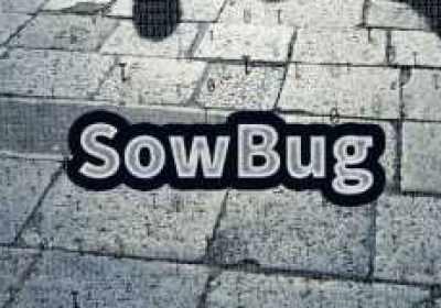Nuevo grupo de espionaje cibernético 'SowBug' roba secretos diplomáticos desde 2015